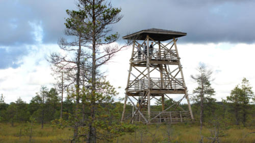 Vaatetorn